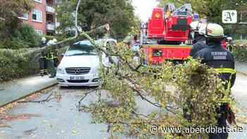 Hamburg Sturm: Umgestürzte Bäume – Bahnverkehr im Norden beeinträchtigt