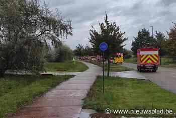 Vrachtwagen verliest gevaarlijke zuren in Lommel: straat urenlang afgesloten