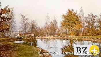 So wurde der Märchenpark in Salzgitter zum Greifpark