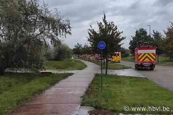 Vrachtwagen verliest 800 liter zwavelzuur uit lekkende conta... (Lommel) - Het Belang van Limburg Mobile - Het Belang van Limburg