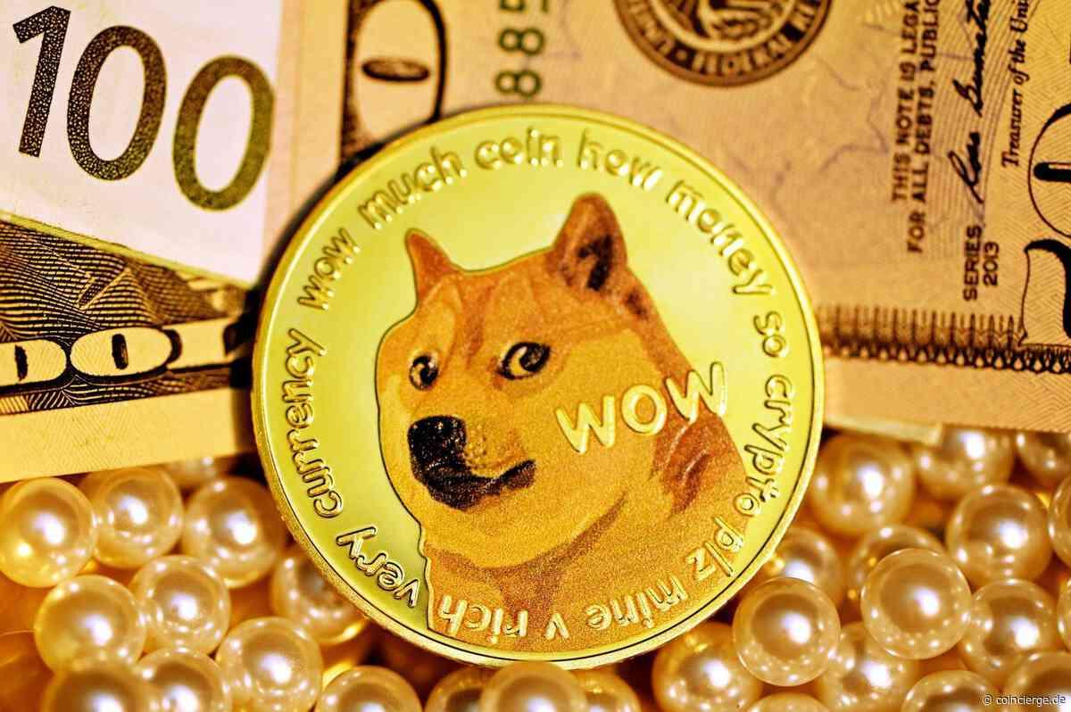 On-Chain-Daten zeigen: 70% aller Dogecoin-Besitzer haben mit DOGE Gewinn gemacht - Coincierge