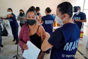Movilizan 60 mil vacunas de Celaya a Salamanca e Irapuato - Informativo Ágora