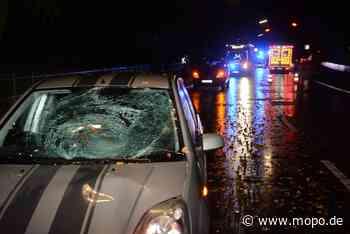Auf dem Zebrastreifen: Fußgängerin von Auto erfasst und schwer verletzt - Hamburger Morgenpost