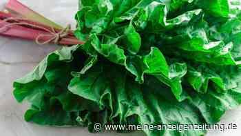 Giftige Gemüseblätter: Von diesem Grünzeug müssen Sie die Finger lassen