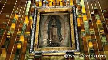 Nuevo libro recuerda cómo quisieron destruir a la Virgen de Guadalupe con una bomba - ACI Prensa