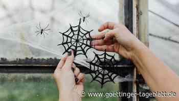 Halloween: Schaurig schöne Deko-Ideen für Haus und Garten