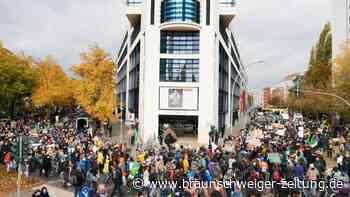 Tausende Klimaschützer protestieren in Berlin