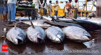 India rejects WTO's fisheries pact proposal - Times of India