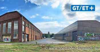Kommentar zu Plänen für die alte Stahlhalle in Linden: Mehr Fantasie!