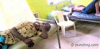 Cholera cases hit 90,890, Jigawa, Yobe, Zamfara get vaccine - Punch Newspapers