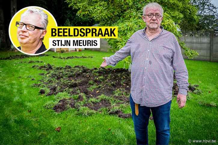 Stijn Meuris over het beeld van de week: Tuinen
