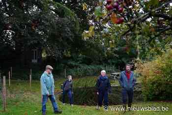'Verborgen bossen' van Gentse stadswijk uitzonderlijk open voor wandelaars