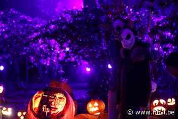 OPROEP. Halloween komt eraan: hoe heb jij jouw tuin versierd?