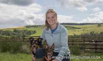 Aberdeenshire young farmer in running for top award - Press and Journal