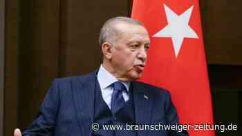 Erdogan: Deutscher Botschafter ist unerwünschte Person