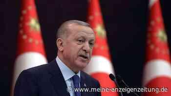 """Erdogan erklärt deutschen Botschafter zu unerwünschter Person - Roth kritisiert """"autoritären Kurs"""""""