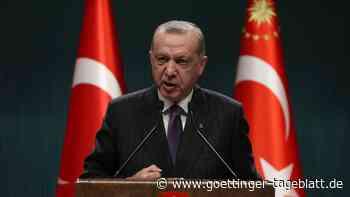 Streit um Botschafter: Deutsche Politiker kritisieren türkischen Präsidenten Erdogan
