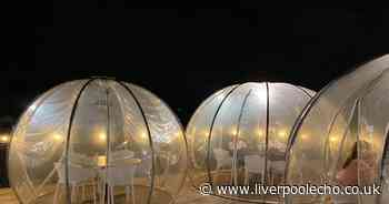 The Black Dog restaurant where you can dine in a twinkling dome under the stars