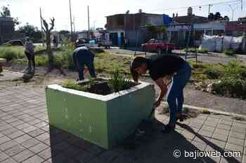 Inician rehabilitación y limpieza de parques vecinales en Irapuato - Bajioweb