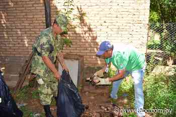 Alerta sanitaria por arbovirosis en Villarrica - ABC Color