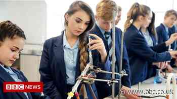 Wales curriculum: New science GCSE prompts dumbing down fears