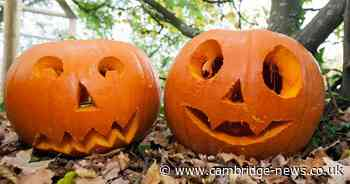 Where the tradition of pumpkin carving come from and why we do it