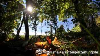 """Hoch bringt goldene Oktobertage in Bayern: """"Wärmeberg"""" naht - doch zuerst gibt es eine Warnung"""