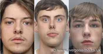 Baby faced criminals who were jailed this year