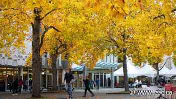 Falling for fall: Explore Canada amid its autumnal colours