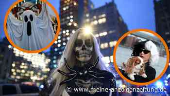 Halloween: Last-Minute-Kostüme selbst machen – Tipps für Unentschlossene