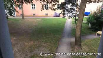 Notunterkunft in Regensburg: Setzt sich die Sozialbürgermeisterin mit einer dezentralen Lösung durch?