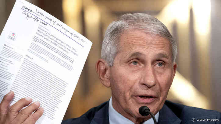 'Molecularly impossible': Fauci blasts Rand Paul's claims that US-funded bat virus research could have created Covid-19