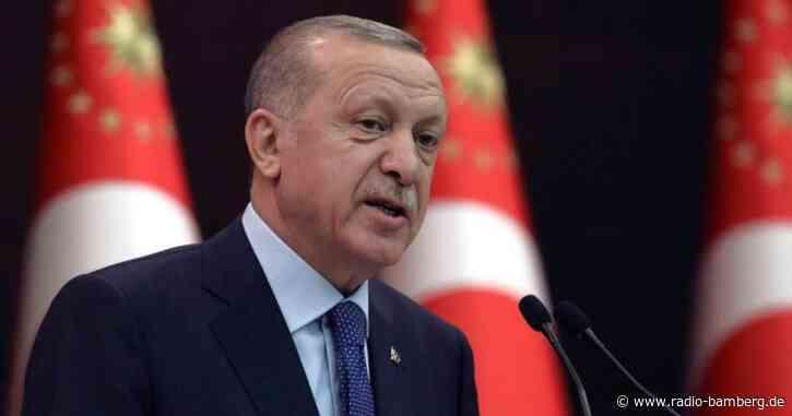 Botschafter-Eklat: Kritik an Erdogan aus dem In- und Ausland