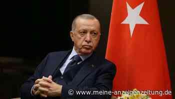 """Erdogan-Wende im Botschafter-Eklat: Türkischer Staatschef spricht von """"Rückzieher"""""""