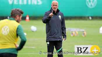 VfL Wolfsburg: Michael Frontzeck soll keine Langzeitlösung sein