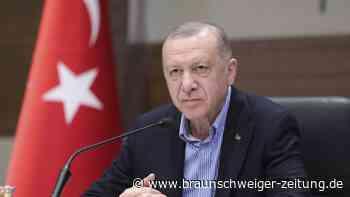 Türkei: Westliche Botschafter dürfen doch im Land bleiben