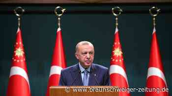 Türkei: Tweet entschärft diplomatischen Streit