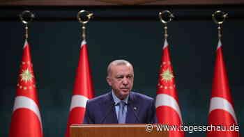 Erdogan rückt von Ausweisung westlicher Diplomaten ab