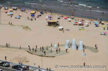 Maldonado apuesta a captar turismo LGBT para la temporada de verano - Montevideo Portal