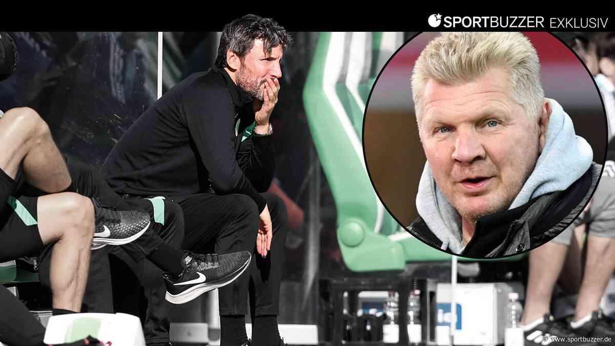 VfL Wolfsburg: Stefan Effenberg kritisiert Rauswurf von Mark van Bommel - Sportbuzzer