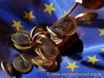 Europäische Union: EU-Rechnungshof: 2020 vier Milliarden Euro falsch ausgegeben - Bietigheimer Zeitung