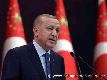 Diplomatie: Botschafter-Eklat: Erdogan signalisiert Entspannung - Bietigheim-Bissingen - Bietigheimer Zeitung