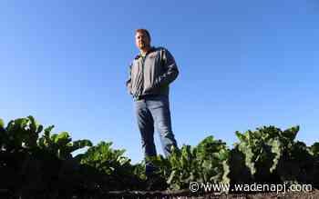 Red River Valley businesses rally during sugarbeet harvest - Wadena Pioneer Journal