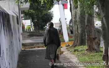 Envejecimiento en Veracruz; triplicado número de ancianos - Diario de Xalapa