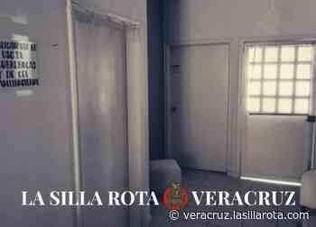 Alertan por presunta clínica veterinaria falsa en Veracruz - La Silla Rota
