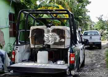 Registran intensa movilización en colonia de Veracruz - Imagen del Golfo