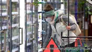 Rückruf-Skandal in Deutschland: Bundesregierung wird Versagen vorgeworfen