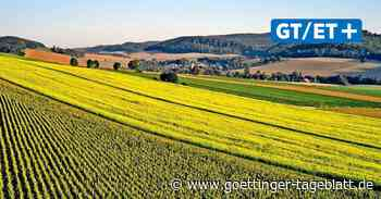 Region Göttingen: Große Unternehmen auf dem Weg zur Klimaneutralität