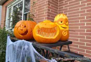 Send us photos of your carved pumpkins! - BarrieToday