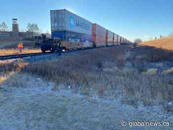 Collision between freight train and pedestrian in Maple Crest